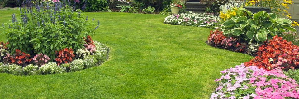 Call 210-827-2280 - Ladybug Landscaping - Gardening For The San Antonio Area